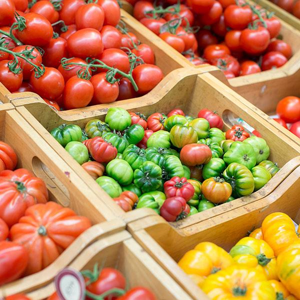fruits-legumes-sq